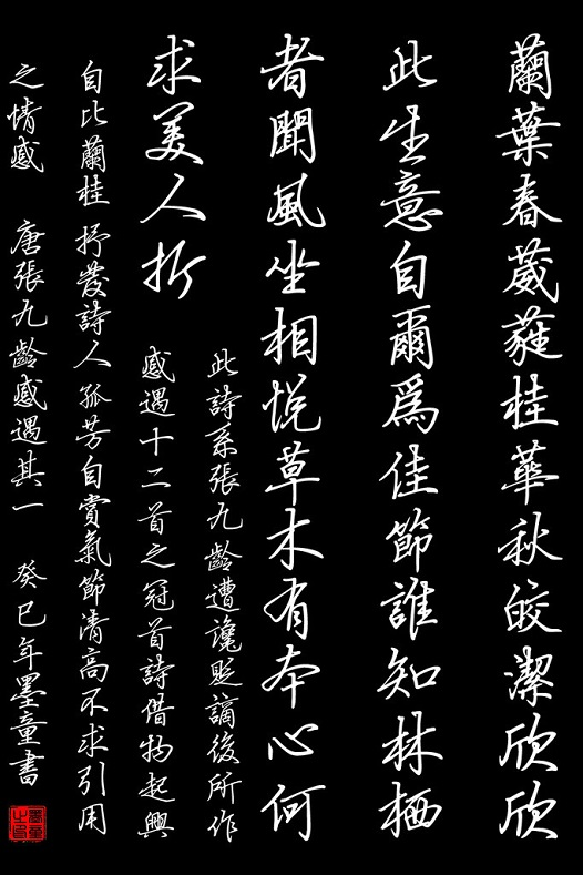 《感遇·兰叶春葳蕤》张九龄唐诗注释翻译赏析 55