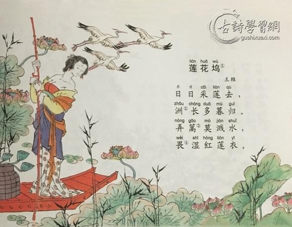 《莲花坞》王维唐诗注释翻译赏析 6 3